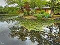 玉泉館跡地公園(Gyokusen Hall Ruins Park) - panoramio - t-konno (2).jpg