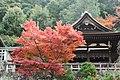 知恩院 Chion-in (11152748204).jpg