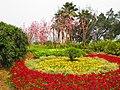 重庆-朝天门的春天 - panoramio.jpg