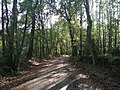 0029 Reserva de la Biosfera Terras do Miño.jpg