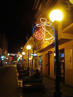 English: Christmas lights in Sanok