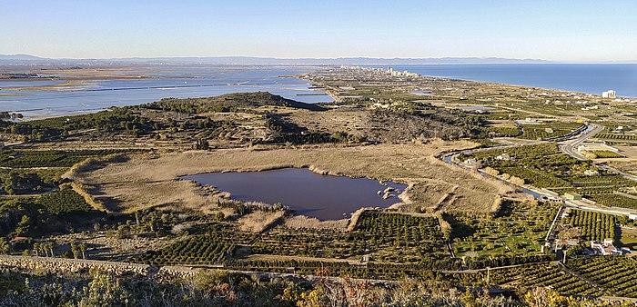 1. Llacuna de Sant Llorenç (Parc Natural de l'Albufera, País Valencià).jpg