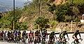 10 Etapa-Vuelta a Colombia 2018-Ciclistas en el Peloton 2.jpg