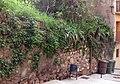 117 Antiga muralla, c. Marcel·lí Buxadé.jpg
