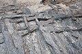 14-11-15-Ausgrabungen-Schweriner-Schlosz-RalfR-102-N3S 4085.jpg