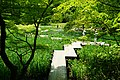 140517 Kobe Municipal Arboretum Japan01s3.jpg