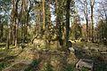 1478viki Cmentarz żydowski przy ul. Lotniczej. Foto Barbara Maliszewska.jpg