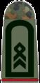 161-Stabsfeldwebel.png