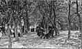 1908 General Conference Mennonite Church meeting (14644019740).jpg