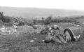 1916 Victime din Armata Romaniei in batalia de la Turtucaia.png