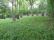 2008-05-18-Simmern-jüdischer-Friedhof01