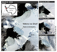 Wilkins Ice Shelf[edit]. 2008 partial collapse