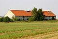 2011-08 Brzezina 2.jpg
