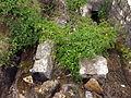 20130606 Mostar 057.jpg