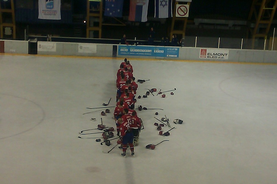 2014 IIHF World Championship Division II, Serbia national ice hockey team (3)
