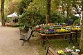 2015-10-17 11-22-55 marche-plantes-belfort.jpg