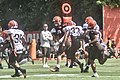 2016 Cleveland Browns Training Camp (28586361942).jpg