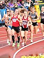 2016 US Olympic Track and Field Trials 2336 (28256789955).jpg