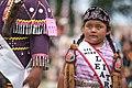 2017 Prairie Island Indian Community Wacipi (Pow Wow) (36135859845).jpg