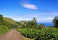 Açores 2010-07-19 (5046778850).jpg