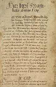 The first page of Hrafnkels saga from the Árni Magnússon Institute