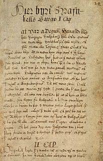 Hrafnkels saga literary work
