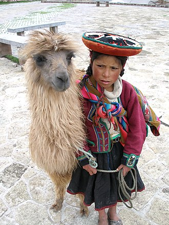 Llama - A traditionally dressed Quechua girl with a llama in Cusco, Peru