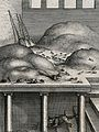 A cat with a mouse in its mouth is descending the stairs in Wellcome V0023023.jpg