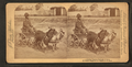 A stylish Virginia turnout, (showing African American boy in goat cart), by Jarvis, J. F. (John F.), b. 1850 2.png