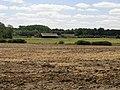 Abandoned Farm - geograph.org.uk - 202234.jpg