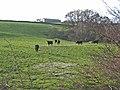 Acton Farm - geograph.org.uk - 282224.jpg