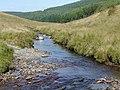Afon Tywi south of Moel Prysgau, Powys - geograph.org.uk - 1572538.jpg