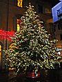Albero di Natale Piazza del Comune.jpg