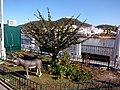 Alcoutim (Portugal) (33246715625).jpg