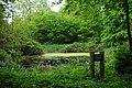 Alexandra's Pond - geograph.org.uk - 1306181.jpg
