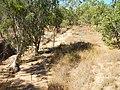 Almaden QLD 4871, Australia - panoramio (4).jpg