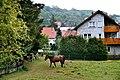 Altenkirchen (Pfalz), im Dorf.jpg