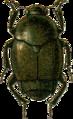 Amartus aurosericeus Jacobson.png