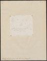 Amblypharyngodon mola - 1700-1880 - Print - Iconographia Zoologica - Special Collections University of Amsterdam - UBA01 IZ14900015.tif