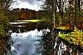 Amsterdamse Bos - panoramio (1).jpg