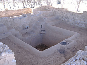 History of the wine press - Ancient Egyptian pressing basin, where grapes were probably trodden by human feet in the Marea region around present day Lake Mariout.
