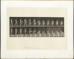 Animal locomotion. Plate 237 (Boston Public Library).jpg
