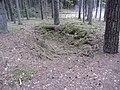 Antazavės sen., Lithuania - panoramio (57).jpg