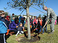 Arbor Day celebration 150219-F-BD983-262.jpg