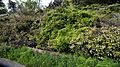Arch trellis plants in Victorian walled garden at Quex House Birchington Kent England.jpg