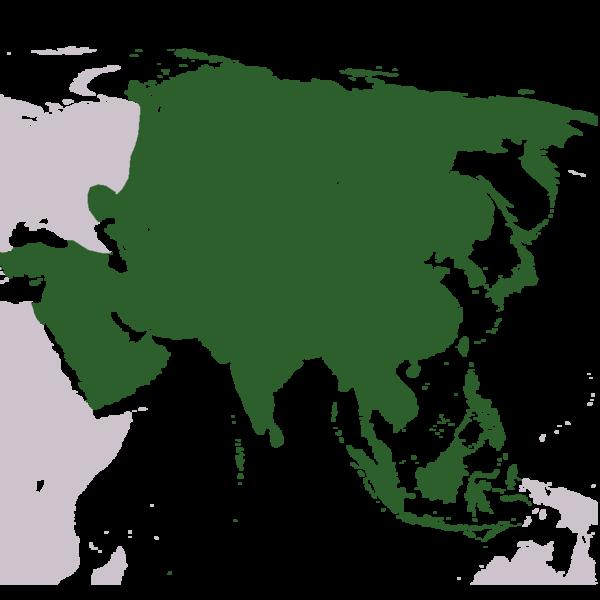File:Asia stub.png