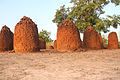 At the stone circles in Wassu Gambia are many heavy stones used.jpg