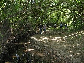 Atascadero Creek (Sonoma County, California)