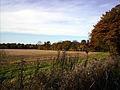 Autumn 6 (3009685515).jpg