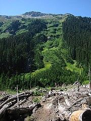 Avalancha Verde